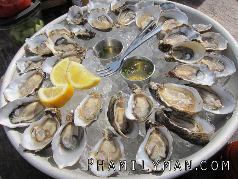 hog-island-oyster-farm-marshall-oysters